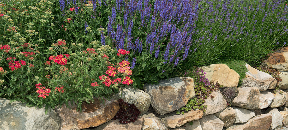 Gartengestaltung15